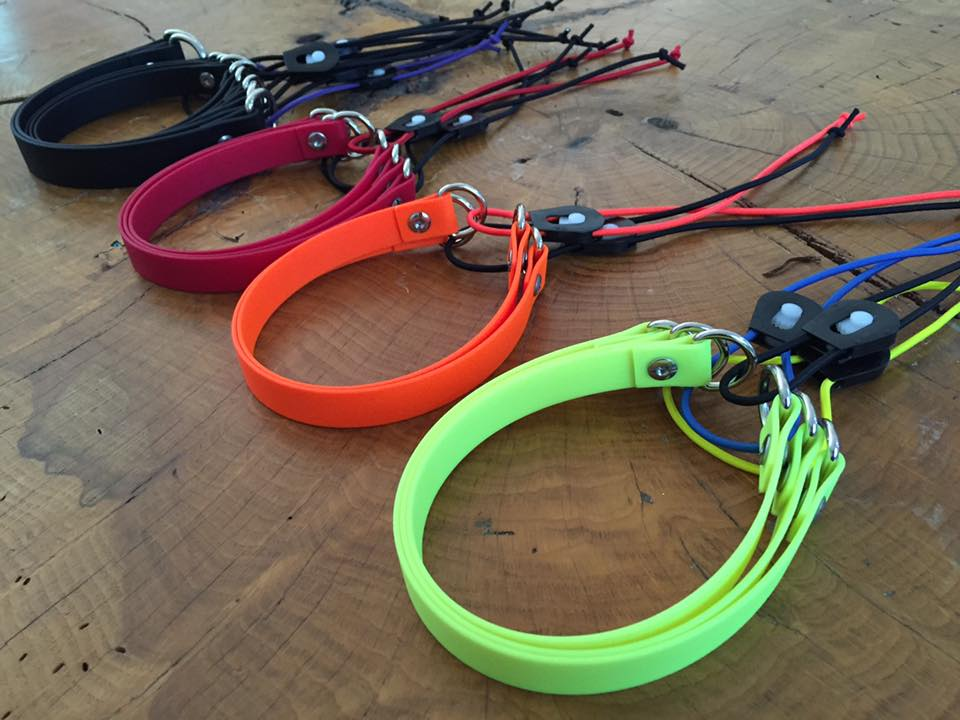 Bungee collars | Canine Behavior Solutions | Dog training Austin