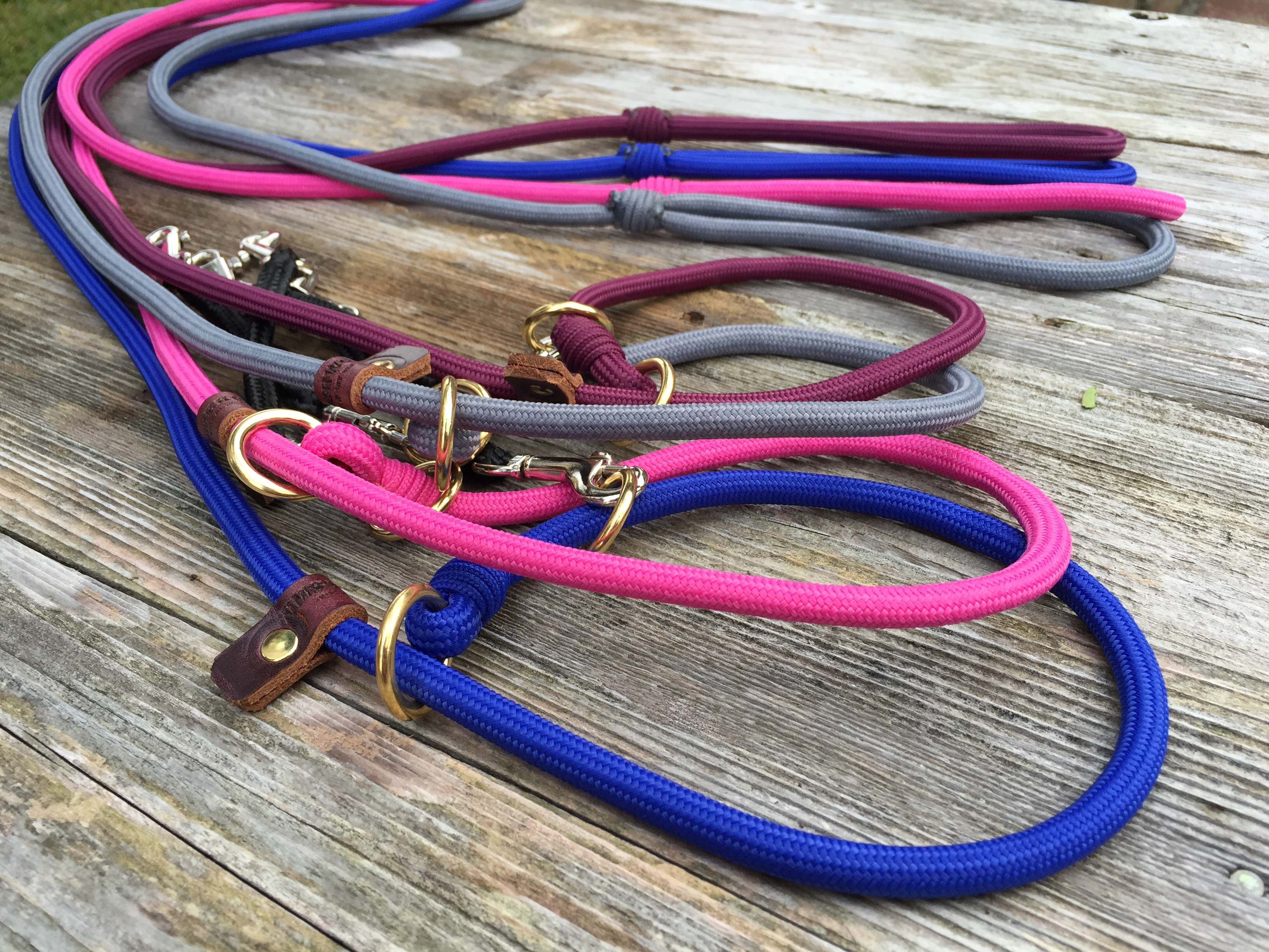 Bungee collars | Slip leads | Canine Behavior Solutions