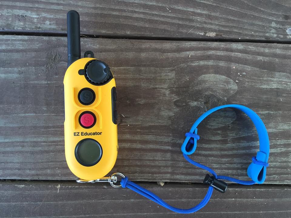 Bungee collars | Wrist remote keepers | Canine Behavior Solutions
