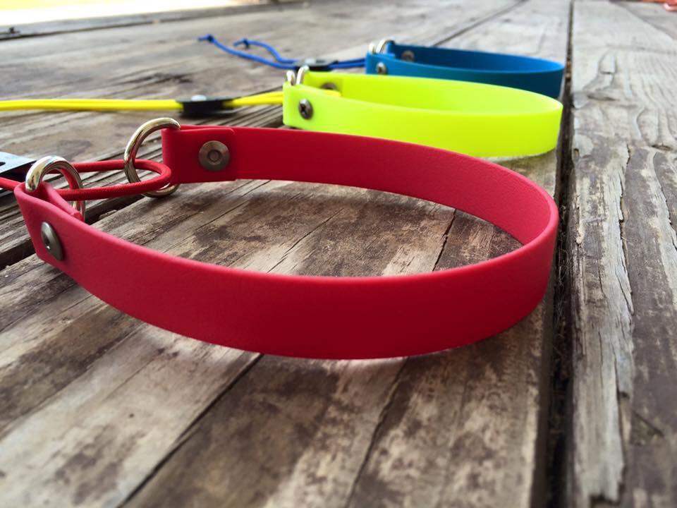 Bungee collars | Canine Behavior Solutions | Dog training Austin