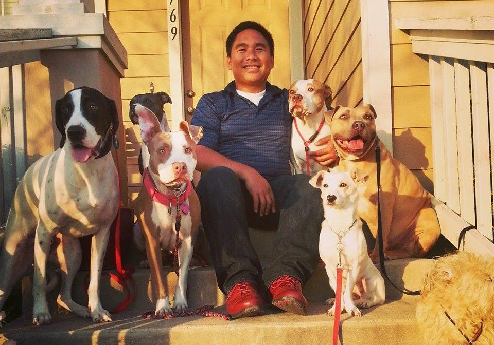 Sam Tabar   Dog trainer   Dog training Austin   Canine Behavior Solutions